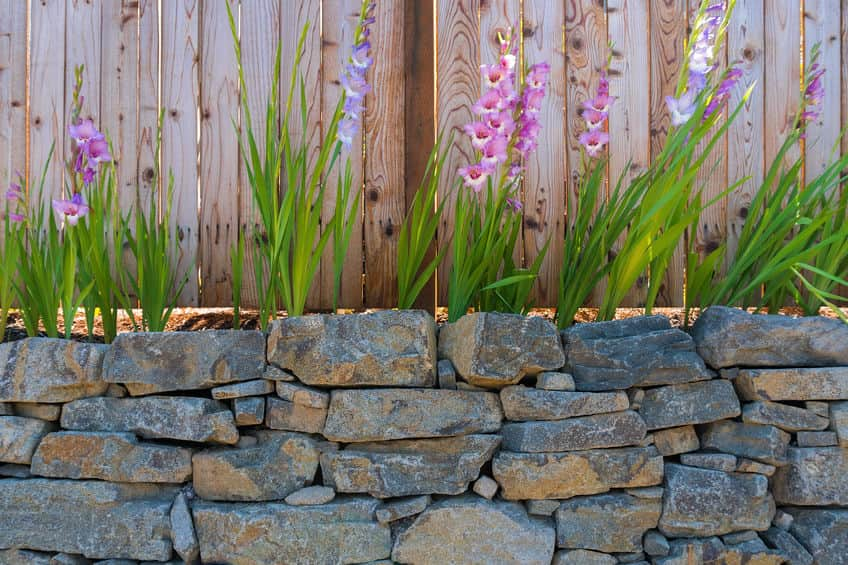 Retaining Walls: Practical and Aesthetically Pleasing