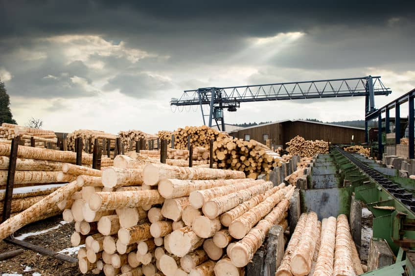 Why Has the Price of Lumber and Building Materials Increased in 2021?
