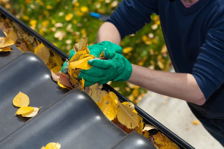 How to Keep Your Home in Tip-Top Shape