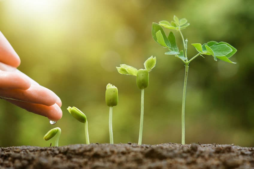 Three Methods to Consider that can help you Grow your Small Business