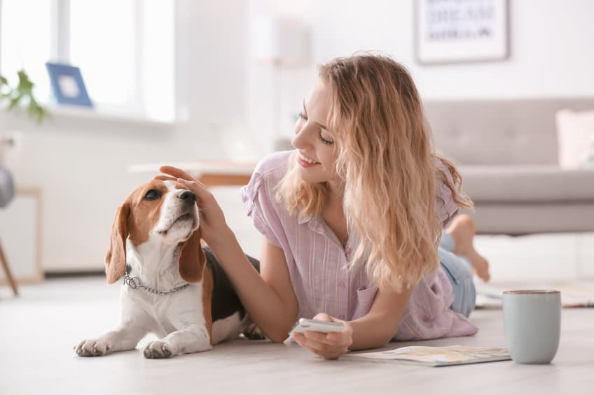 Cost-Effective Pet Resources to Fit Your Budget