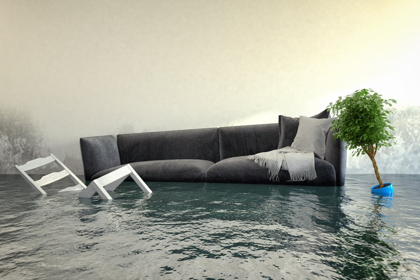 Water Damage: 8 Reasons Not to Ignore It
